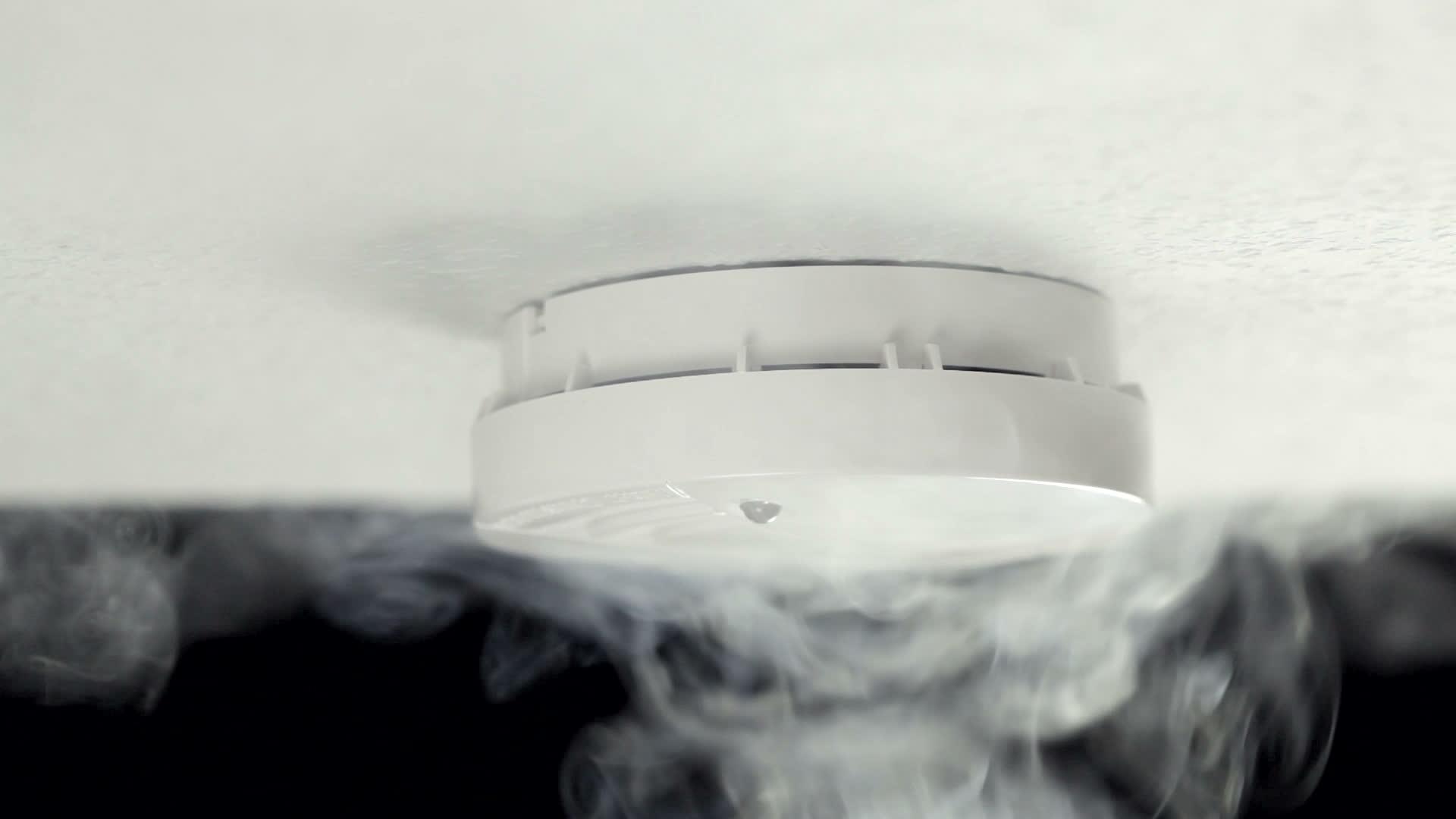 Suitsuandur koduvalvele